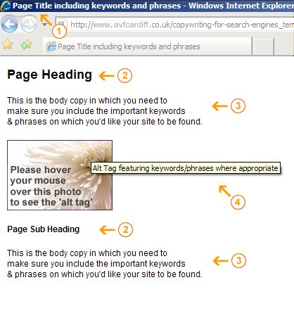Example page showing 'Page Title', 'Page Heading', 'Body Copy' and 'Alt Tag' elements